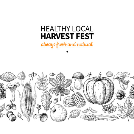 Harvest festival. Hand drawn vintage vector border. Seamless pattern of vegetables, fruits, leaves. Farm Market poster. Vegetarian set of organic products. Detailed food drawing sketch for menu, banner, label, logo, flyer, poster.