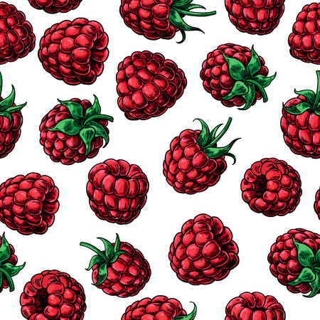 Raspberry seamless pattern. Vector drawing. Isolated berry sketch on white background. Summer fruit. Detailed hand drawn vegetarian food. Great for packaging design, tea or juice label, print