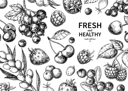 Wild berry drawing. Hand drawn vintage vector frame. Summer fruit set Illustration