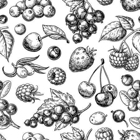 Nahtlose Musterzeichnung der wilden Beere. Hand gezeichneter Weinlesevektorhintergrund.
