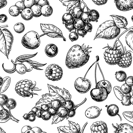 Wild berry seamless pattern drawing. Hand drawn vintage vector background. Çizim