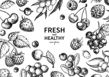 Wild berry  vintage vector frame. Summer fruit set