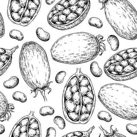 Baobab vector seamless pattern. Superfood drawing. Organic healthy food sketch. Great for banner, poster, label. Isolated hand drawn background