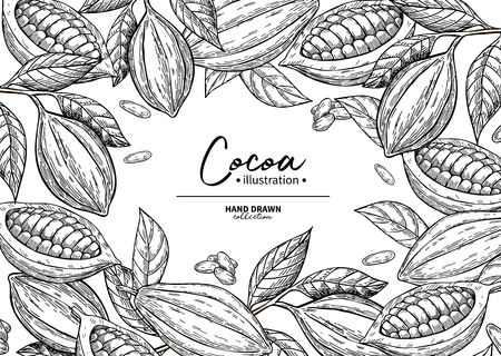 Cocoa frame. Vector super food drawing template.  Fruit, leaf and bean engraving.