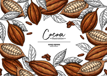 Cocoa frame. Fruit, leaf and bean engraving. Stock Illustratie