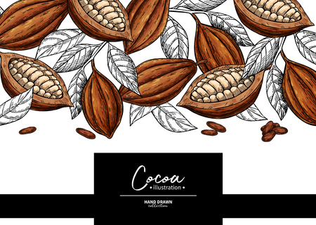 Cocoa frame. Fruit, leaf and bean engraving. Illustration