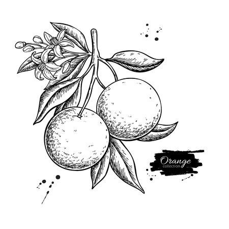 Pomarańczowy rysunek gałęzi
