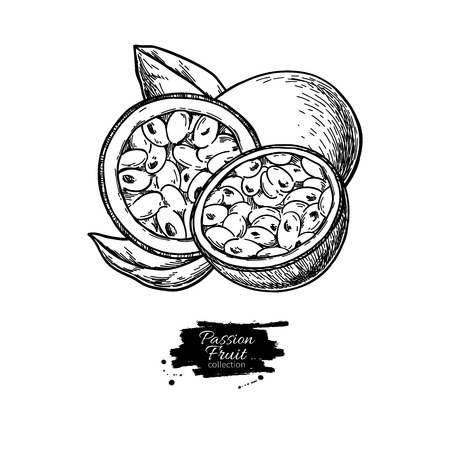 Passion fruit vector drawing. Hand drawn tropical food illustration. Engraved summer passionfruit. Whole and sliced maracuya with leaves. Botanical vintage sketch for label, juice packaging design Stock Vector - 124287499