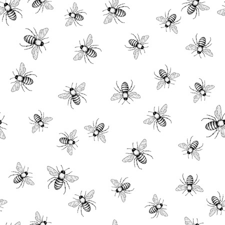 Bee  seamless pattern. 矢量图像