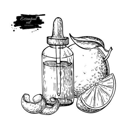 Bottiglia di olio essenziale di arancia e illustrazione vettoriale disegnata a mano di frutta. Disegno per trattamento di aromaterapia, medicina alternativa, bellezza e spa, ingrediente cosmetico. Ottimo per etichette, packaging design.