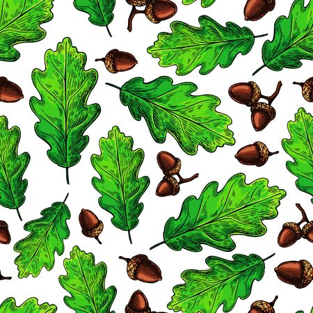 Seamless vector pattern with autumn leaves. Oak leaf and acorn drawing.
