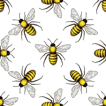 Bee vector seamless pattern. 일러스트