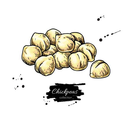 Chickpeas hand drawn vector illustration. Isolated Vegetable engraved style object. Detailed vegetarian food drawing. Farm market product. Great for menu, label, icon Ilustração