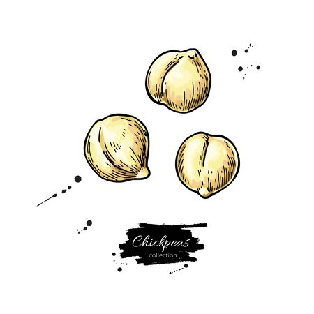 Chickpeas hand drawn Isolated on white Illustration
