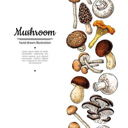 Mushroom drawing vector border. Isolated food frame sketch