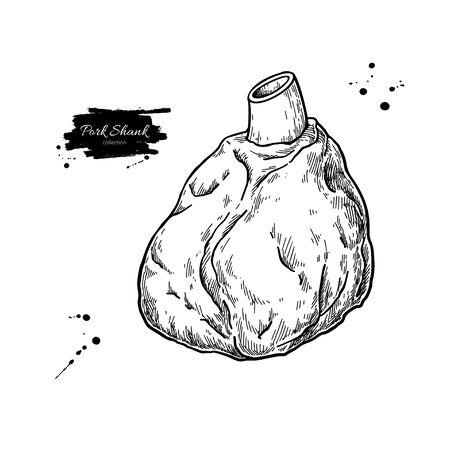 Pork shank vector drawing. Pig leg meat hand drawn sketch. Engraved food illustration.