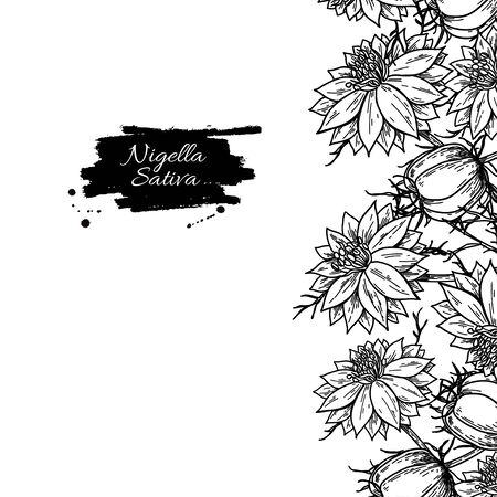 Nigella sativa frame template. Vector drawing. Black cumin isolated illustration. Hand drawn botanical flowers and leaves. Vintage engraved oil ingredient. Sketch of medicinal herb.