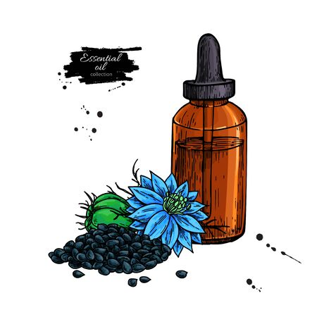 Nigella sativa essential oil bottle hand drawn vector illustration. Black cumin plant drawing for Aromatherapy, medicine, beauty and spa, cosmetic ingredient. Great for label, poster, packaging design