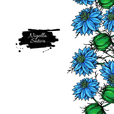 Nigella sativa frame template. Vector drawing. Black cumin isolated illustration. Hand drawn botanical flowers and leaves. Essential oil ingredient. Sketch of medicinal herb. Иллюстрация