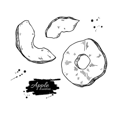 Dried apple chips vector drawing. Hand drawn dehydrated fruit ring and slices. Healthy vegan food snack. Sketch of granola, cereals and oat milk ingredient.