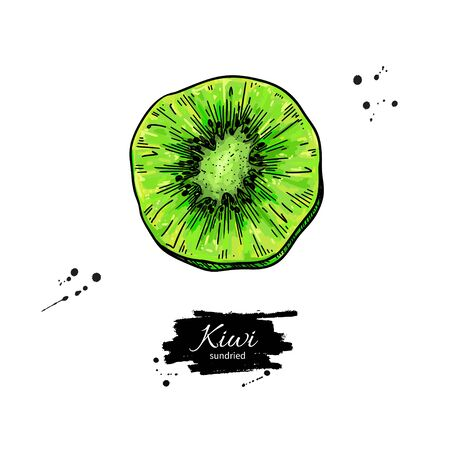 Dried kiwi chips vector drawing. Hand drawn dehydrated fruit ring illustration. Иллюстрация