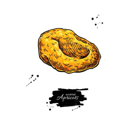 Dried apricot vector drawing. Hand drawn dehydrated fruit illustration. Healthy vegan raw food snack. Sketch of granola, cereals and oat milk ingredient. Natural organic sweets
