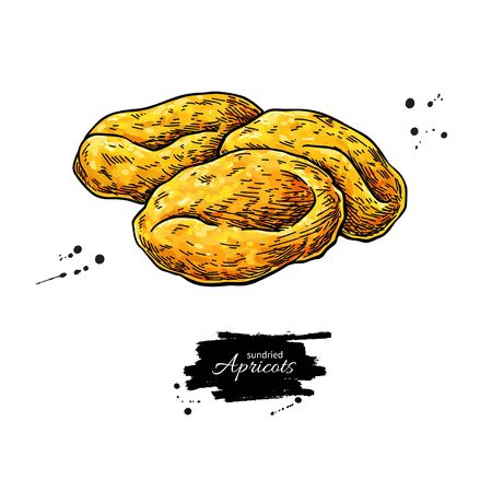 Dried apricot heap vector drawing. Hand drawn dehydrated fruit illustration
