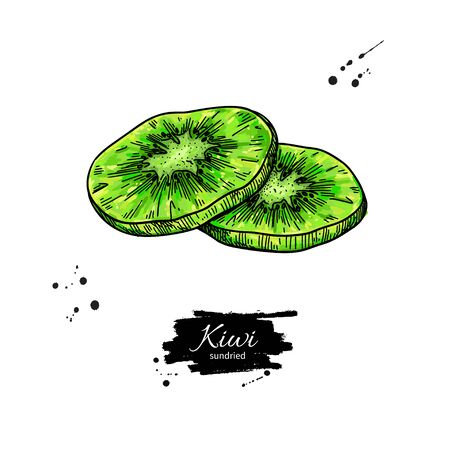Dried kiwi chips vector drawing. Hand drawn dehydrated fruit ring illustration