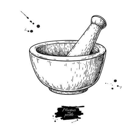Mortar and pestle vector drawing. Engraving style pharmacy and medicine object. Hand drawn equipment for grinding herbs and spices. Kitchen pounder. Vintage illustration. Иллюстрация