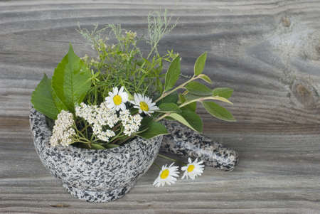 Medicinal herbs in stone mortar on old wooden board photo