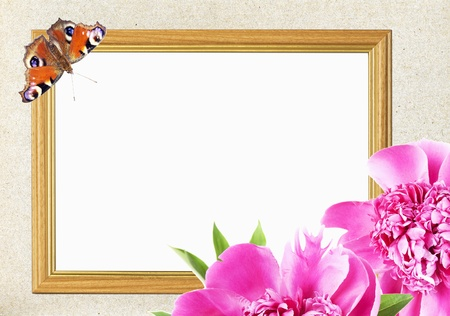 frame for photo with pink peony flower and butterfly photo