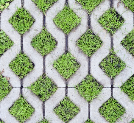 eco-friendly parking of concrete cells and turf grass Stock Photo - 23522027