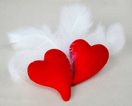 scarlet: Pair of scarlet fluffy hearts among fluffy white feathers
