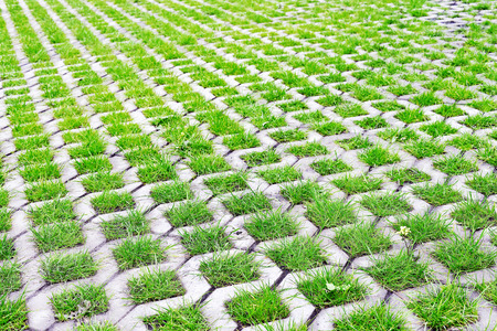 Eco-friendly parking of concrete cells and turf grass