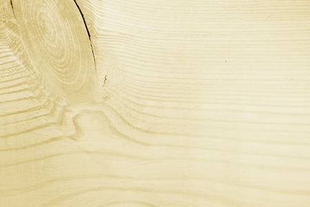 maple wood texture: High resolution wooden
