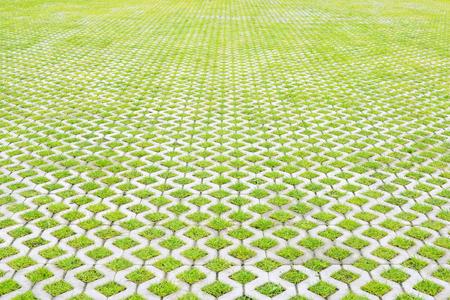 Spacious eco-friendly parking of concrete cells and turf grass Archivio Fotografico