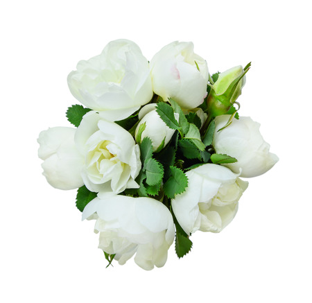 dogroses: Bouquet of fragrant flowers of white dog-roses isolated at  white Stock Photo