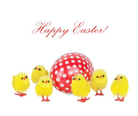 hatchling: Group of yellow toy chicks surrounded red with white polka dots easter egg, isolated on a white background, with space for text Stock Photo