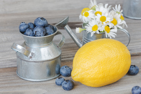 tableware life: Blueberries in a metal toy tableware, lemon and chamomile on the background of old wood; rustic still life