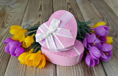 unpainted: Bouquet of yellow and purple crocuses and two pink gift boxes in the shape of a heart, tied with white ribbons, on an unpainted wooden surface
