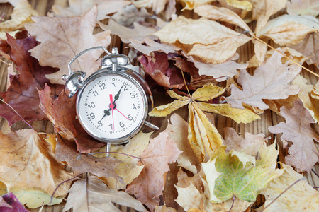 senescence: Alarm clock in retro style is on the ginger fallen leaves in the park