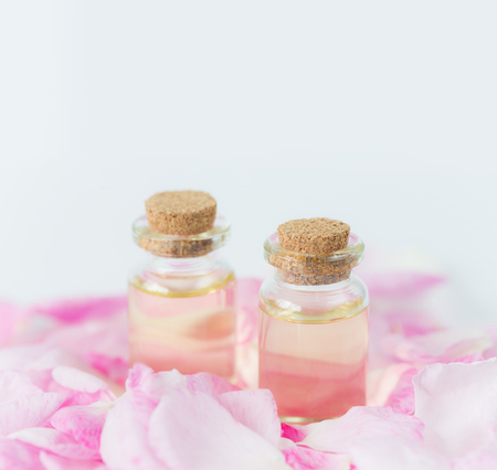 Attar: Two vials with essential oil and petals of pink roses on a white background; with space for text