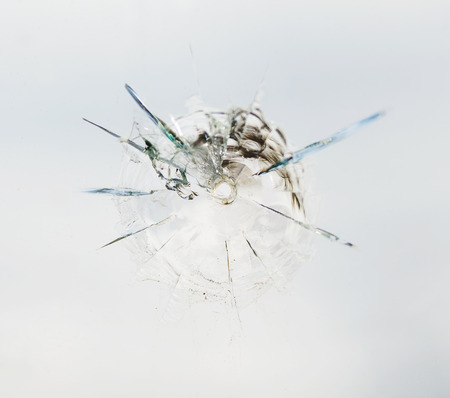 sabotage: Round bullet hole in the glass with radial cracks