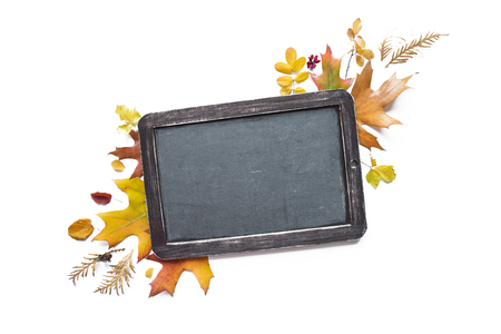 Autumn composition with empty black chalkboard with copy-space and multicolored fallen leaves isolated on white background