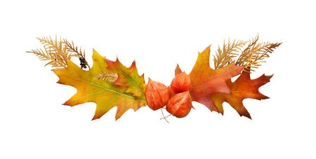Colorful and bright decoration of fallen autumn leaves isolated on a white  background