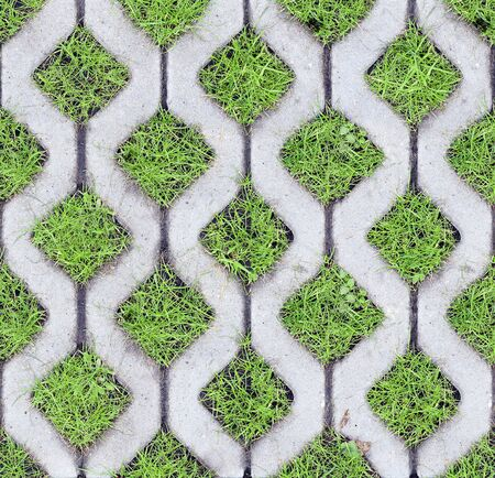 Top view of eco-friendly parking of concrete cells and turf grass as a seamless pattern. Geometric background of a green urban environment Stockfoto