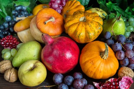 Decorative pumpkins, squash, apples, pears, pomegranates and grapes on the dark wooden background