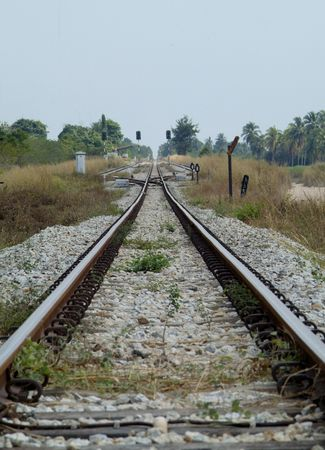 diversion: Railway track with diversion and signals in tropical forest