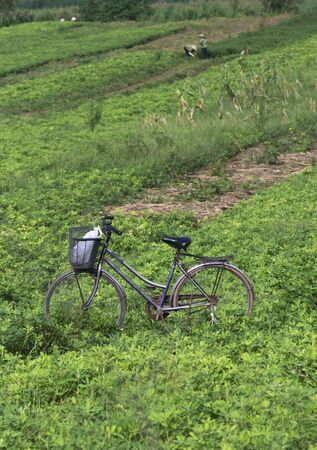 sharply: Old, worn bicycle parked in a field with Vietnamese farmers in the background. The bicycle is sharply in focus while the background is not. Stock Photo