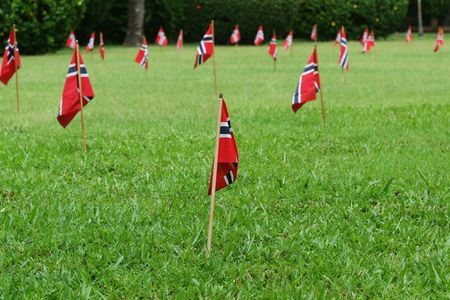 17th: Small Norwegian flags in a green, lush garden on the national day, 17th of May. Shallow depth of field with the nearest flag in focus.